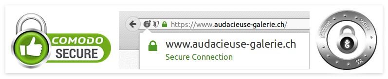 audacieuse-galerie secure