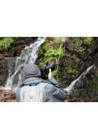 Cours photo naturaliste et animalier