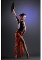 Photographe pour spectacle de danse