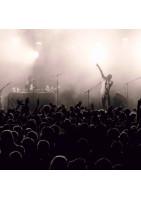 Photographe de concerts, festivals, soirées