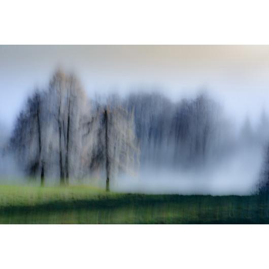 Front de brouillard