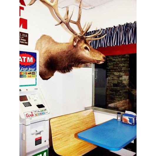Ein Hirsch im Restaurant